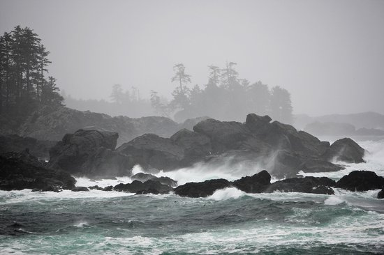 British Columbia, Canada: Storm Watching on the Coast of Vancouver Island