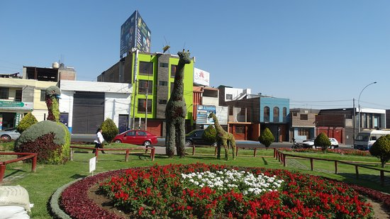 Bosque Municipal de Tacna