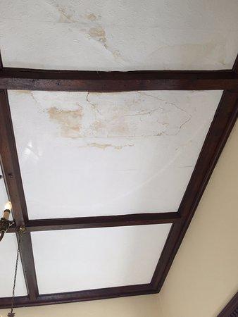 Albrighton, UK: ceiling in dining room