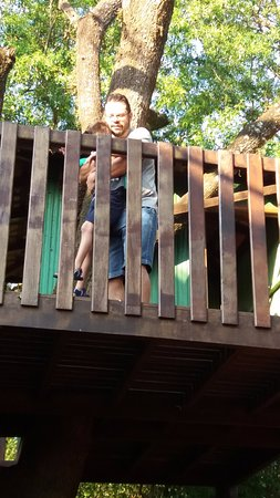 Medianeira, PR: Casa na Árvore