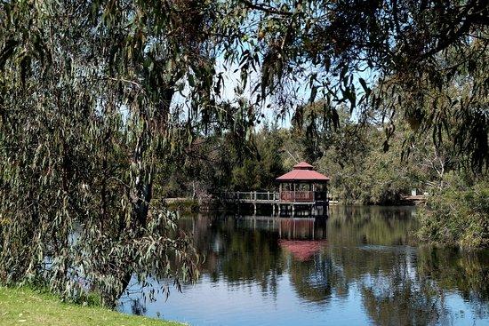 Belmont, Αυστραλία: Tomato Lake