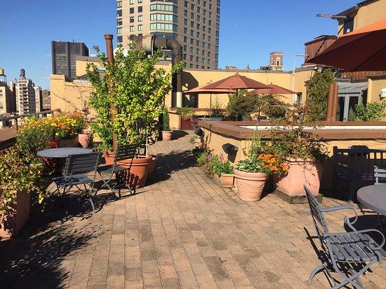 هوتل ويلز: Roof Terrace