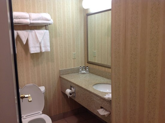 Country Inn & Suites By Carlson, Elkhart North : Bathroom was modern, clean and of average size.