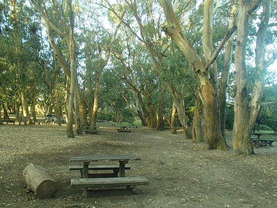 Parque Municipal Vivero Cosme Argerich: descanso, relax, placer..... tranquilidad.