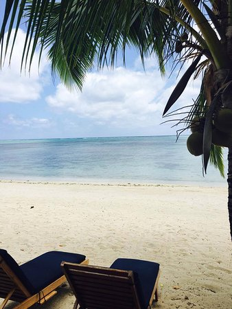 Etu Moana: Up close to the beach