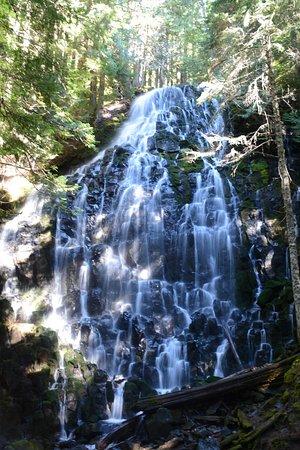 Rhododendron, Орегон: the reward
