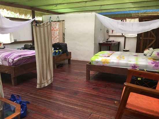 Otorongo Expeditions Jungle Lodge: Our cabin was large and bright with bath ensuite