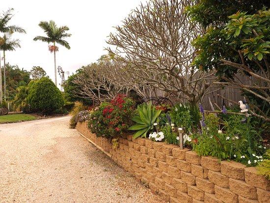 Alstonville, Avustralya: Driveway