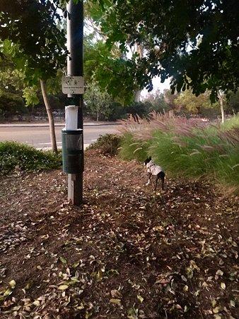 Goleta, CA: photo2.jpg