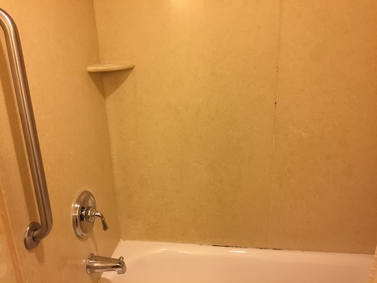 Hilton Garden Inn Mystic Groton: Mold in the shower and shower head gross. Pubic hair on the toilet lid