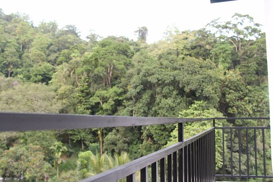 Green Villa Kandy: View from the balcony