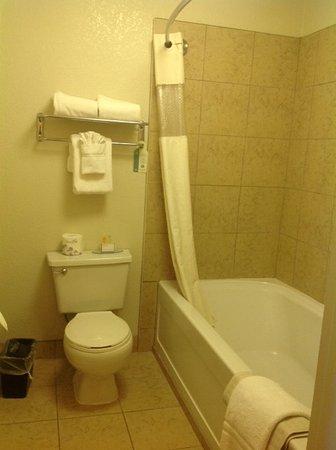 BEST WESTERN Orchard Inn: Bathroom