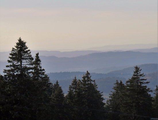 Réserve Naturelle de la Haute Chaîne du Jura