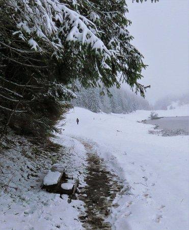 Gex, Francia: Surprise neige au mois de mai 2016, sur lac Lamoura