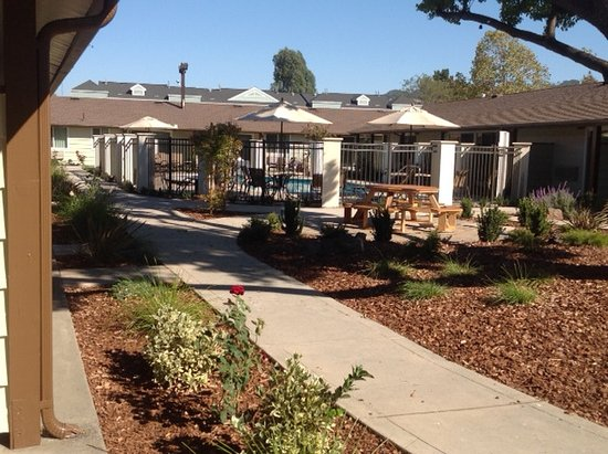 Best Western Plus Garden Inn: Pool And Picnic Area