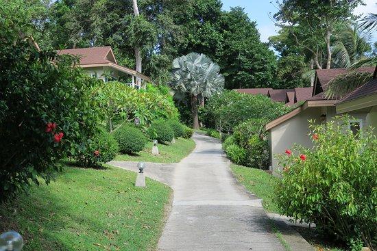 เบย์วิว รีสอร์ท: Path to the swimming pool. (50 yards)