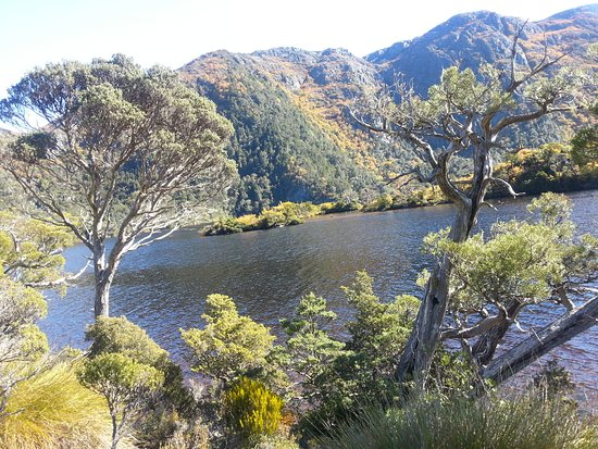 Cradle Mountain-Lake St. Clair National Park, Australia: Beautiful view