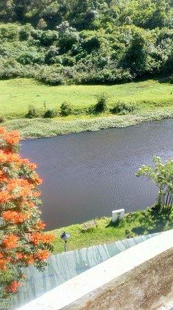 Westwood Riverside Garden Resorts: View from room