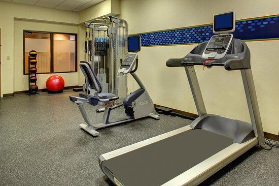 Hampton Inn Greenville I-385 - Woodruff Rd. : Treadmill