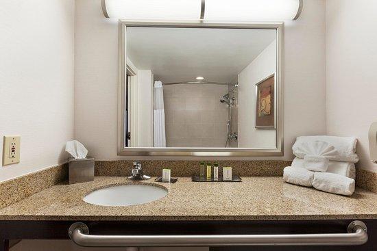Doubletree by Hilton Hotel Detroit-Dearborn: ACC Bathroom 2