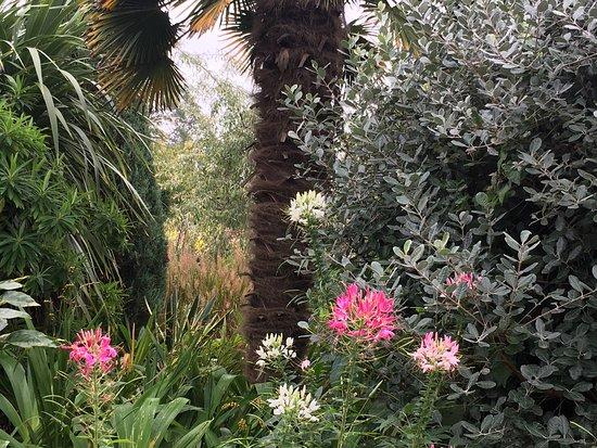 Walled Gardens of Cannington: photo0.jpg