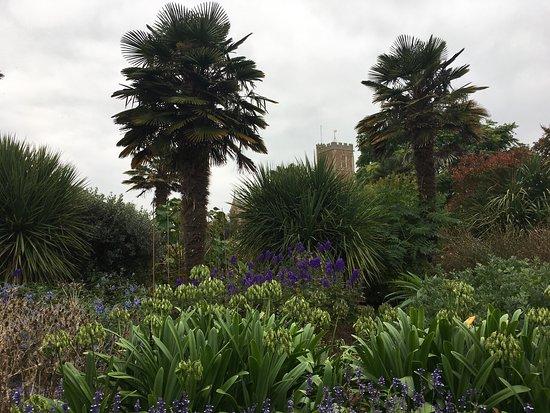 Walled Gardens of Cannington: photo1.jpg