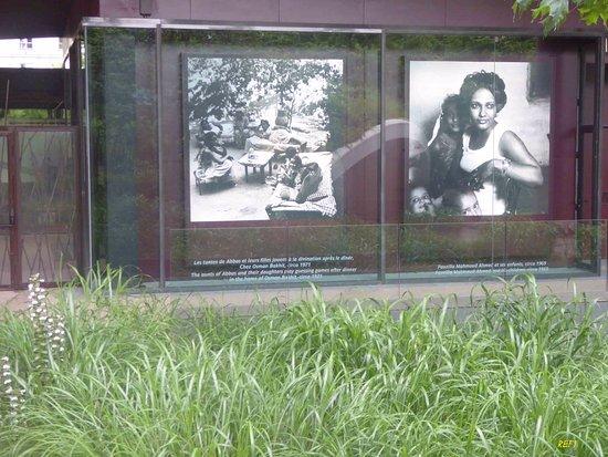 Jardins du Musée du quai Branly - Picture of Musee du quai ...