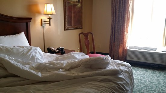 Fitz Casino and Hotel: 20160930_114918_large.jpg