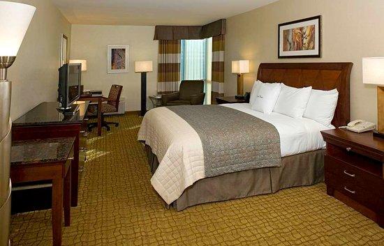 Bethesda, MD: King Guestroom