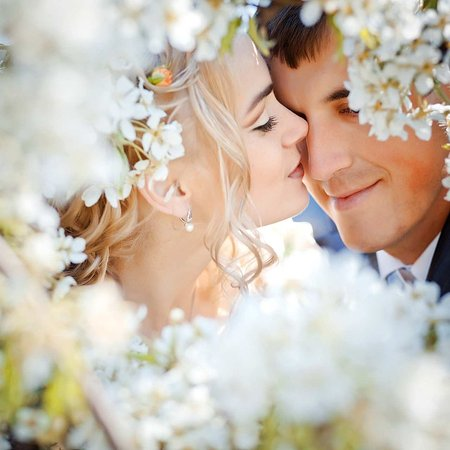 Doubletree Inn at The Colonnade: Weddings
