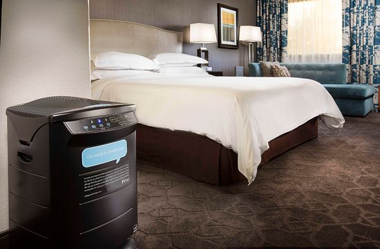Concord, Kalifornia: King Room, PURE Allergy-Friendly