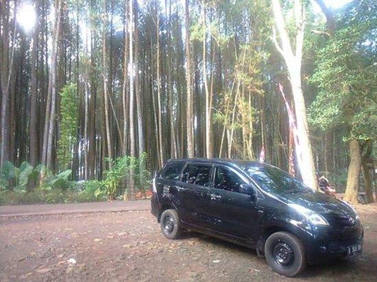 Depok, Indonesia: getlstd_property_photo