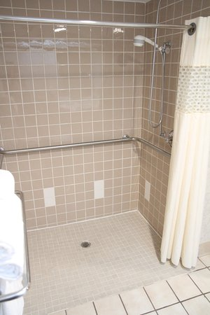 Greeneville, Τενεσί: Accessible Roll-In Shower