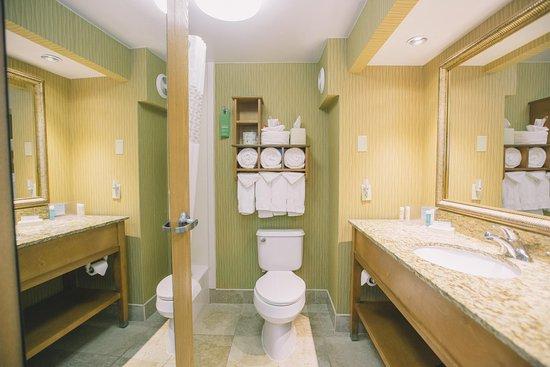 Hampton Inn Tallahassee Central: Standard Bathroom