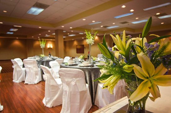 Hampton Inn Winchester-North : Wedding Reception and Dance Floor