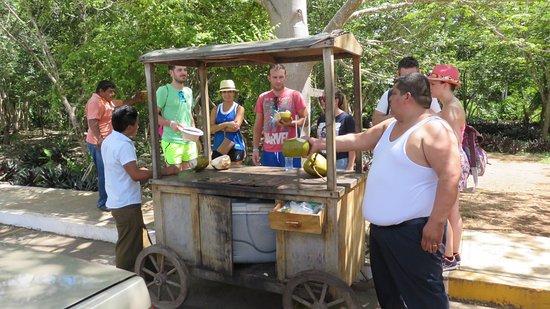 Temozon, المكسيك: Cocos verkoop op de parking