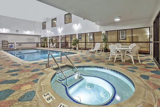 Hampton Inn Detroit/Belleville-Airport Area: Hot Tub