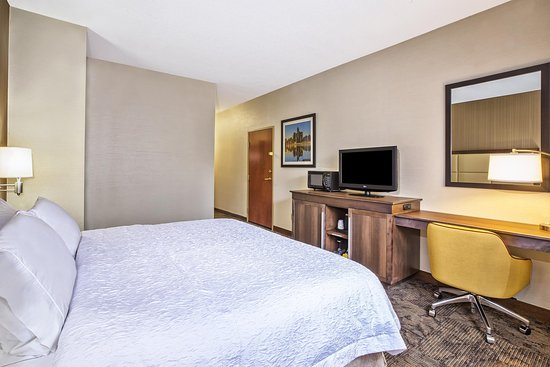 Belleville, MI: 1 King Guest Room Alternate View