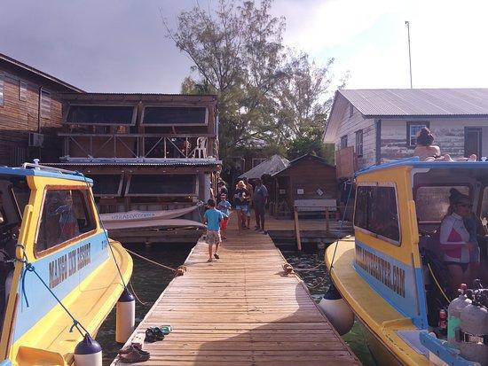 Utila, Honduras: 20161006_075539_large.jpg
