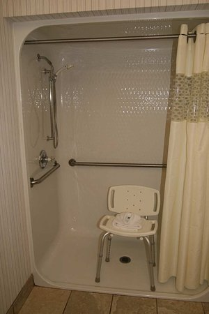 Hampton Inn Pickwick Dam-At Shiloh Falls : Accessible Shower