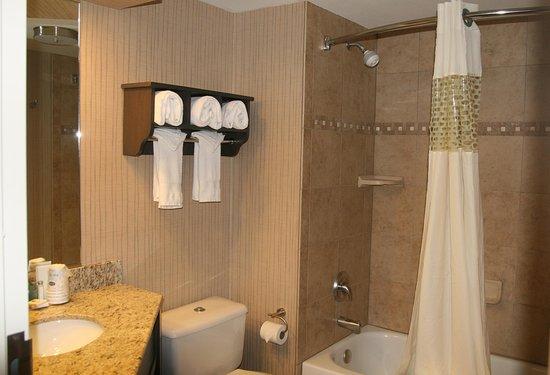 Hampton Inn Durango: Hotel Guestroom Bath