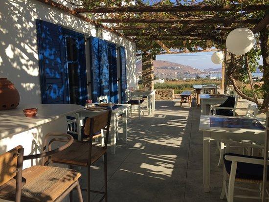 Petres: Une autre vue de la terrasse où se prennent les petits-déjeuners