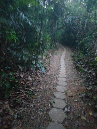 Posada Amazonas Photo