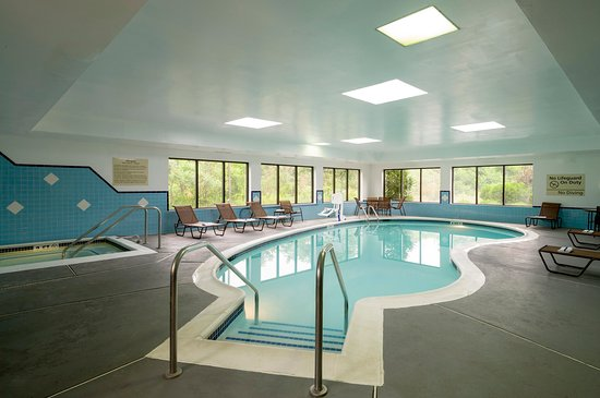 Danville, Pensilvanya: Indoor Pool & Spa