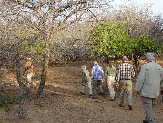 Kubu Safari Lodge: Bushwalk on KUBU premises
