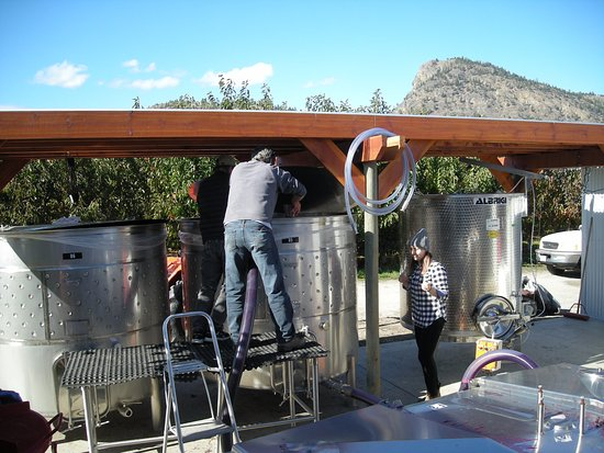 Summerland, Canada: Aerating the Pinot.