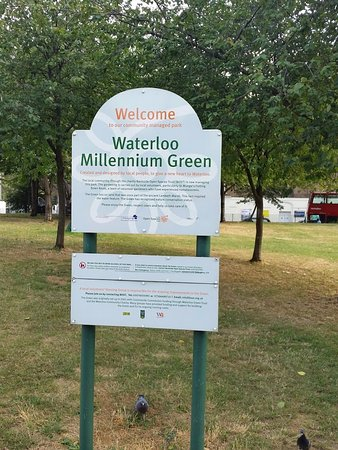 Waterloo Millennium Green