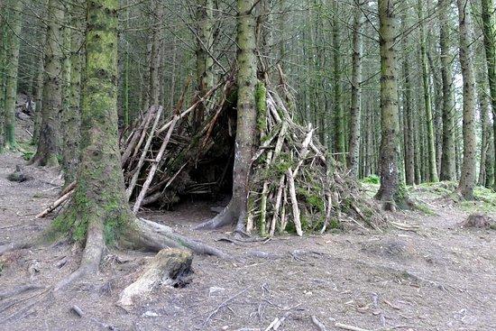Braithwaite, UK: Objects on the forest walk