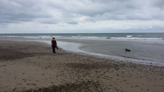 Llanbedr, UK: Shell island beach when the tide is out.