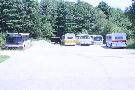 Kennebunkport, ME: Bus collection along the edge of the woods